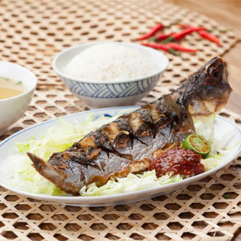 fish-eden_